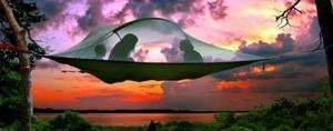Gadget Camping Tentsile