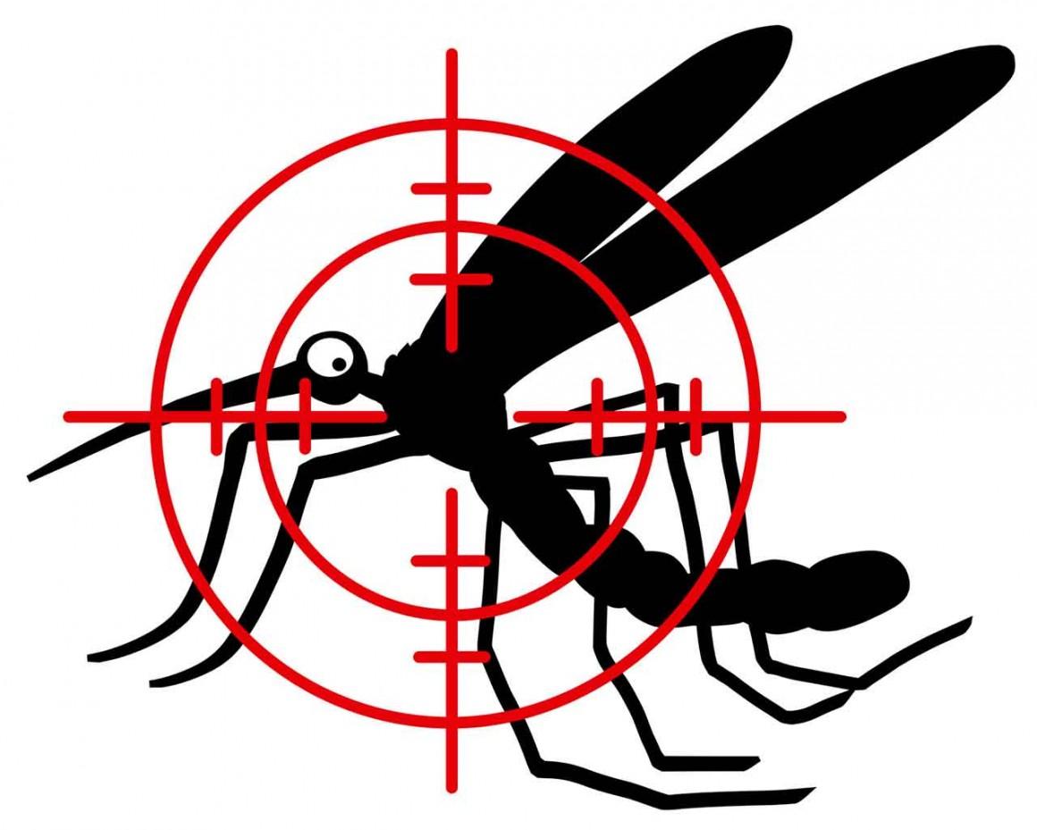 Eviter les moustiques en vacances